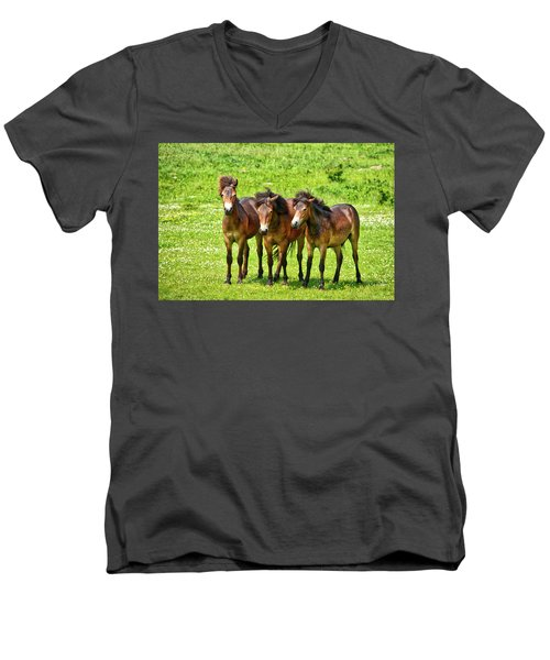 The Trio 3 Men's V-Neck T-Shirt