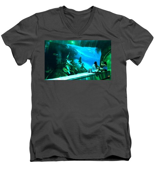 The View Down Under Men's V-Neck T-Shirt
