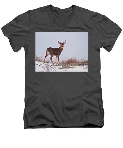 The Watchful Deer Men's V-Neck T-Shirt by Nancy De Flon