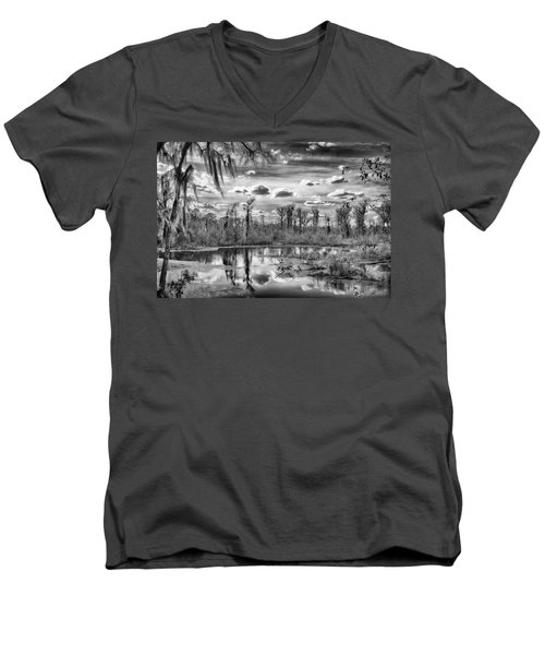 The Wetlands Men's V-Neck T-Shirt by Howard Salmon