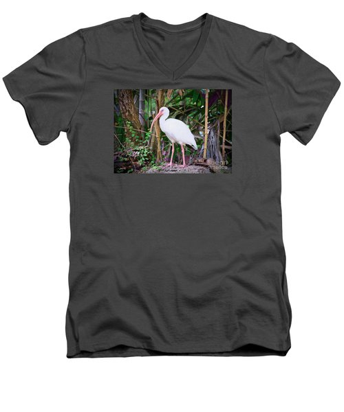 Men's V-Neck T-Shirt featuring the painting The White Ibis by Judy Kay