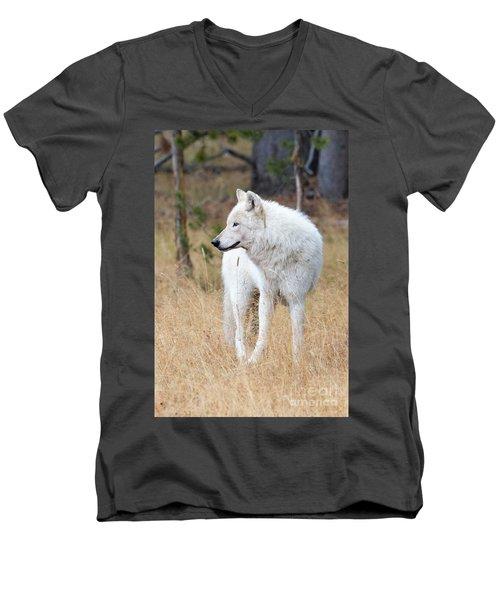 The White Lady Men's V-Neck T-Shirt