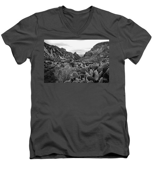 The Window 2 Black And White Men's V-Neck T-Shirt