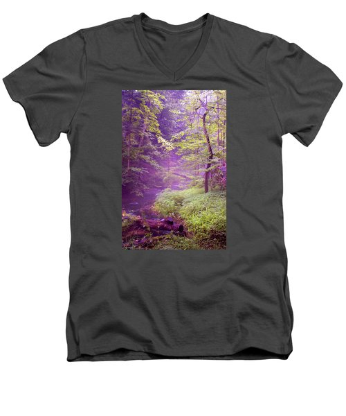 Men's V-Neck T-Shirt featuring the photograph The Wonder Of Nature  Two by John Stuart Webbstock