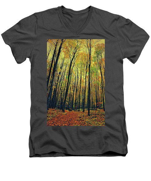 Men's V-Neck T-Shirt featuring the photograph The Woods In The North by Michelle Calkins