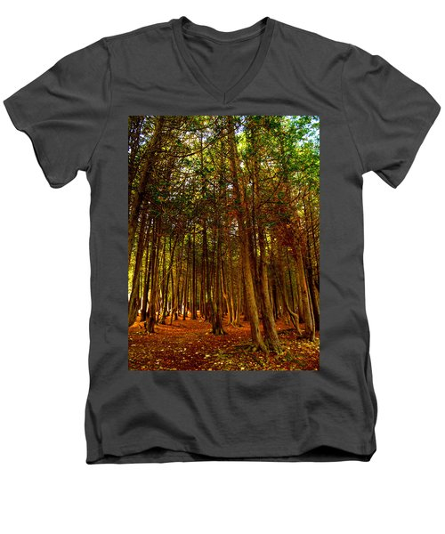 The Woods Men's V-Neck T-Shirt