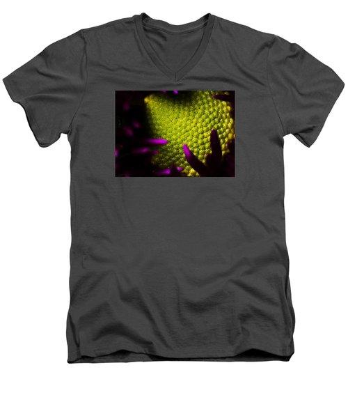 The World Within Men's V-Neck T-Shirt