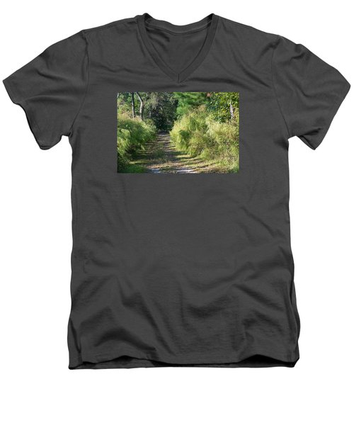 The Yellow Trail Men's V-Neck T-Shirt by Kenneth Albin