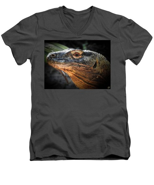 There Be Dragons, No. 5 Men's V-Neck T-Shirt