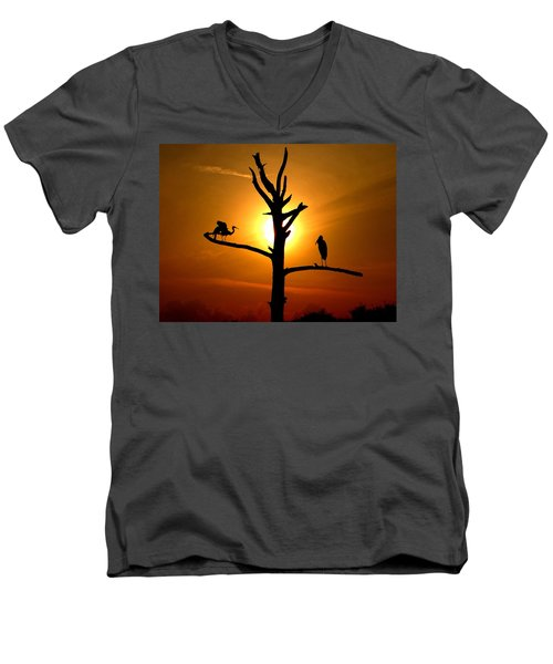 This Land Is Our Land Men's V-Neck T-Shirt