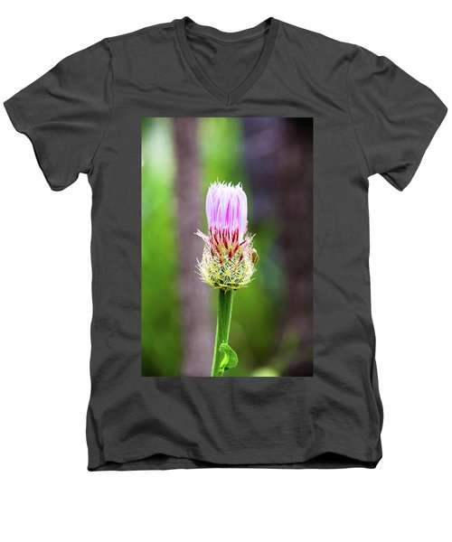Thistle In The Canyon Men's V-Neck T-Shirt