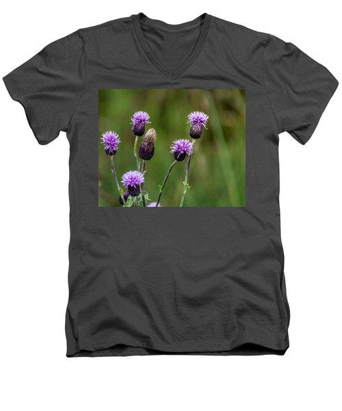 Thistles Men's V-Neck T-Shirt