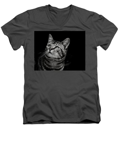 Thoughtful Tabby Men's V-Neck T-Shirt