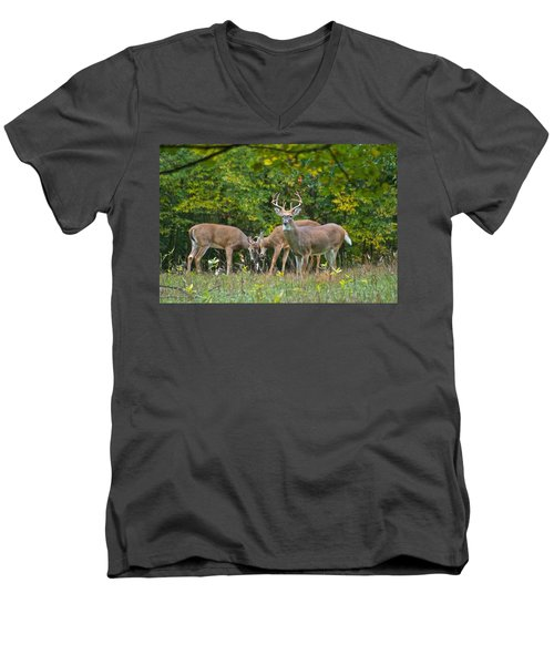 Three Bucks_0054_4463 Men's V-Neck T-Shirt