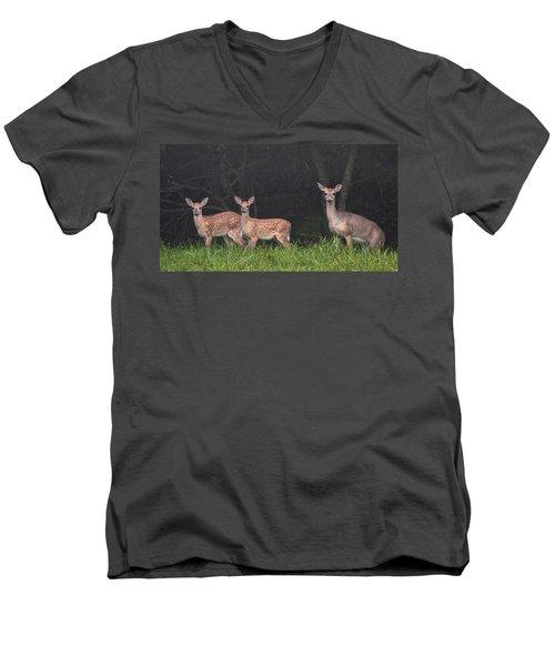 Three Does Men's V-Neck T-Shirt