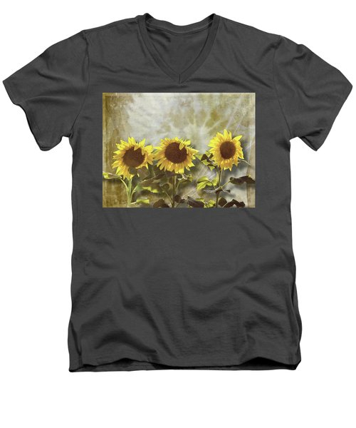 Three In The Sun Men's V-Neck T-Shirt
