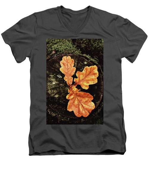 Three Leaves Men's V-Neck T-Shirt