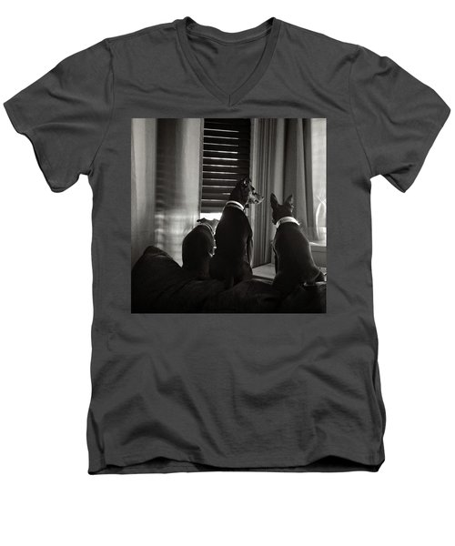 Three Min Pin Dogs Men's V-Neck T-Shirt