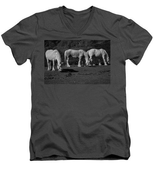 Three Shires Men's V-Neck T-Shirt