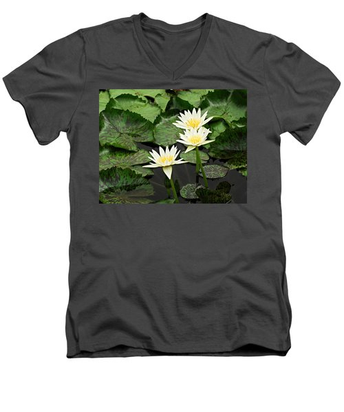 Three Water Lilies Men's V-Neck T-Shirt
