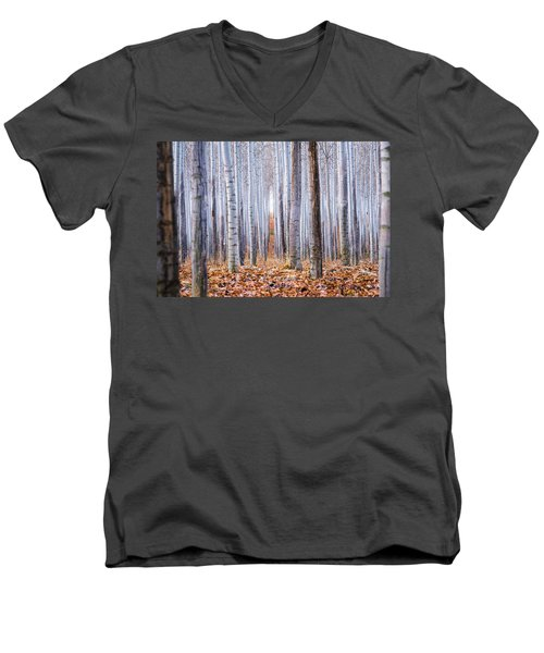Through The Layers Men's V-Neck T-Shirt