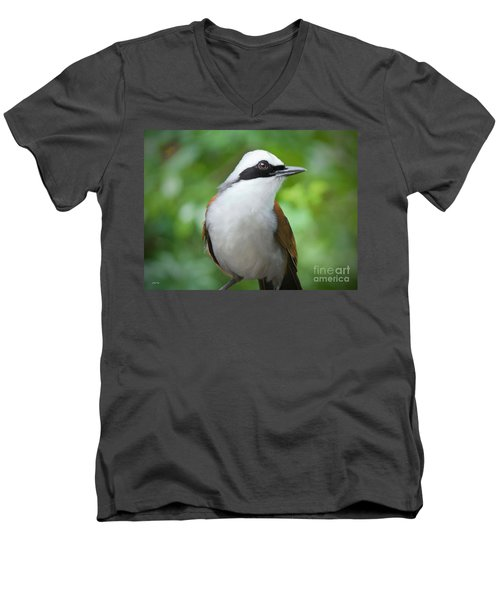 Thrush Pose Men's V-Neck T-Shirt