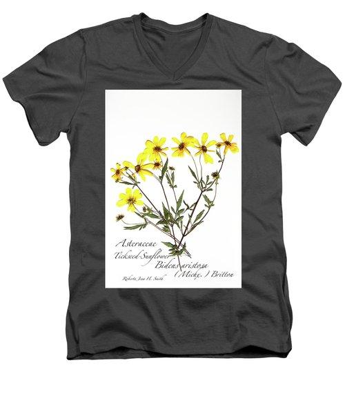Tickseed Sunflower Men's V-Neck T-Shirt