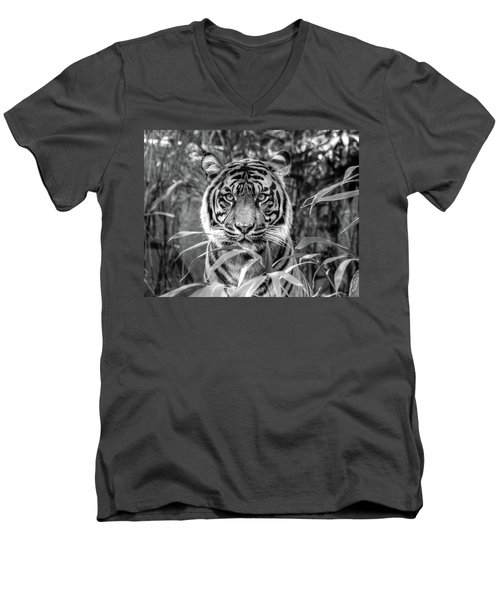 Tiger B/w Men's V-Neck T-Shirt