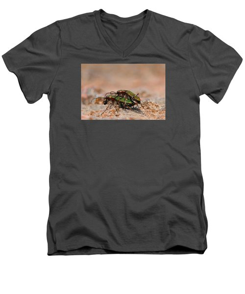 Men's V-Neck T-Shirt featuring the photograph Tiger Beetle by Richard Patmore