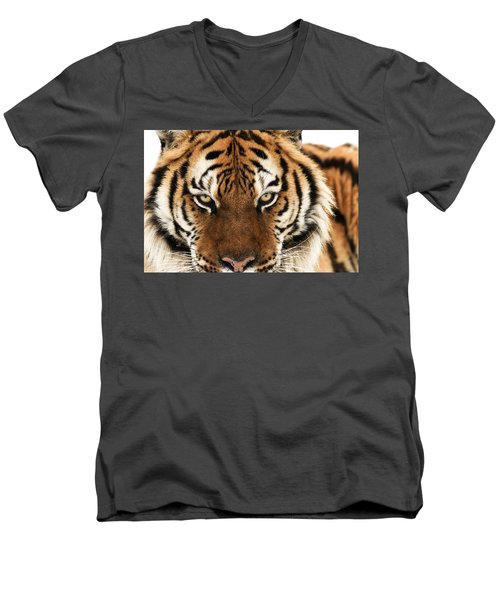 Tiger Eyes Men's V-Neck T-Shirt