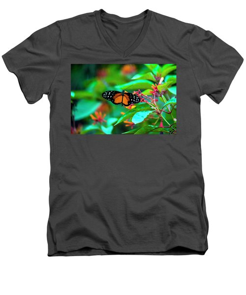 Men's V-Neck T-Shirt featuring the photograph Tiger Longwing Butterfly by David Morefield