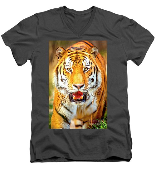 Tiger On The Hunt Men's V-Neck T-Shirt