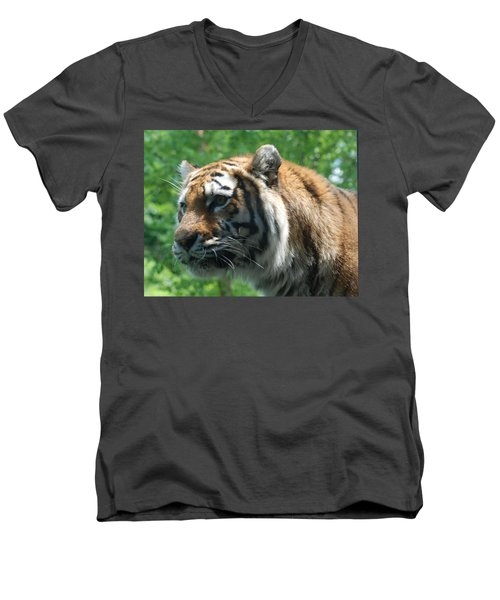 Men's V-Neck T-Shirt featuring the photograph Tiger Profile by Richard Bryce and Family