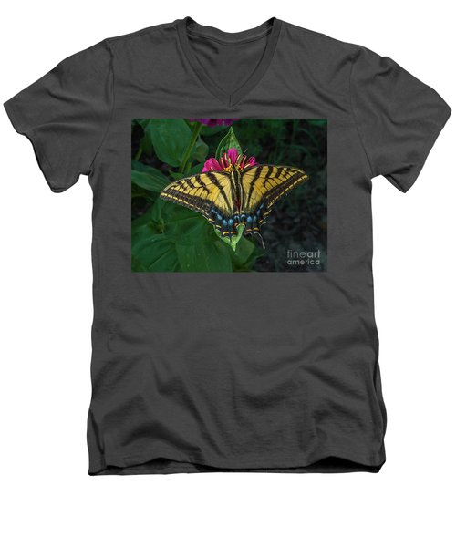 Tiger Swallowtail Men's V-Neck T-Shirt