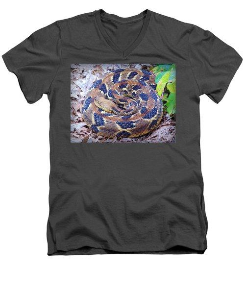 Timber Rattler Men's V-Neck T-Shirt