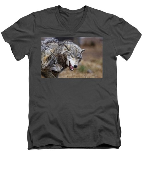 Men's V-Neck T-Shirt featuring the photograph Timber Wolves by Michael Cummings
