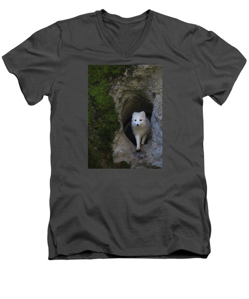 Timidly Men's V-Neck T-Shirt