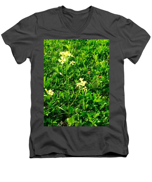 Tiny Beauties Men's V-Neck T-Shirt
