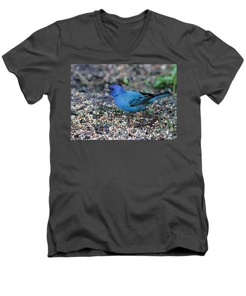 Tiny Indigo Bunting Men's V-Neck T-Shirt