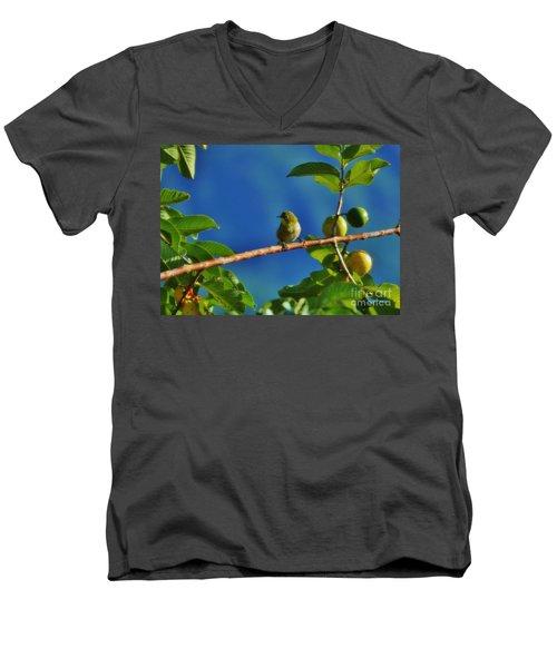 Tiny White Eye And Guava Men's V-Neck T-Shirt