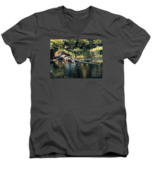 Tired Tree Men's V-Neck T-Shirt