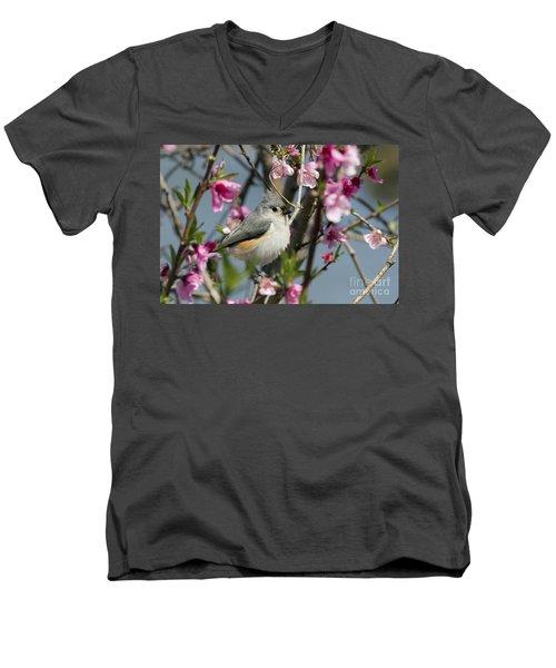 Titmouse And Peach Blossoms Men's V-Neck T-Shirt