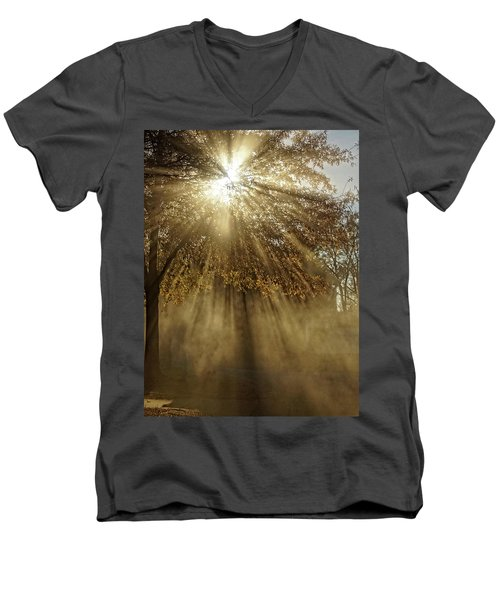 To Catch A Ray Of Sunlight Men's V-Neck T-Shirt