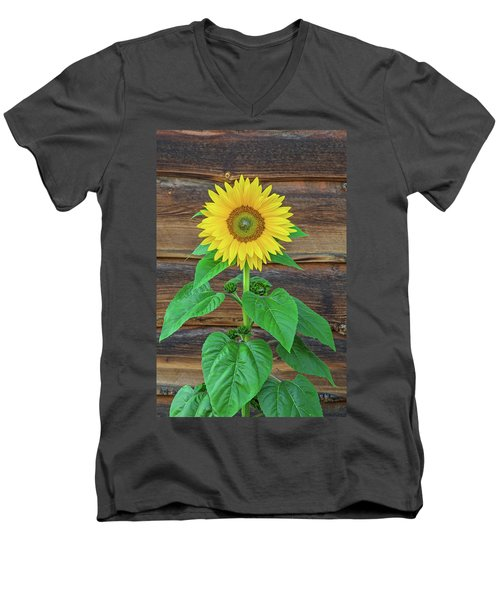 To Love And Be Loved Is To Feel The Sun From Both Sides.  Men's V-Neck T-Shirt