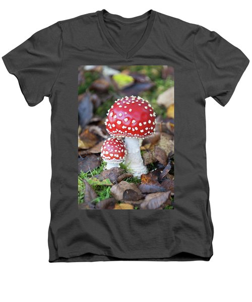 Toadstools In The Woods Vi Men's V-Neck T-Shirt