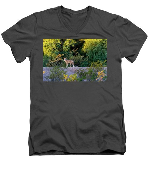 Today's Coyote Men's V-Neck T-Shirt