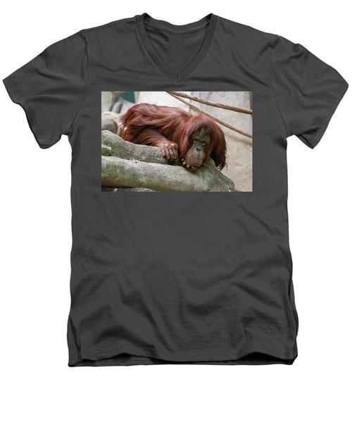 Tolerating Patience Men's V-Neck T-Shirt