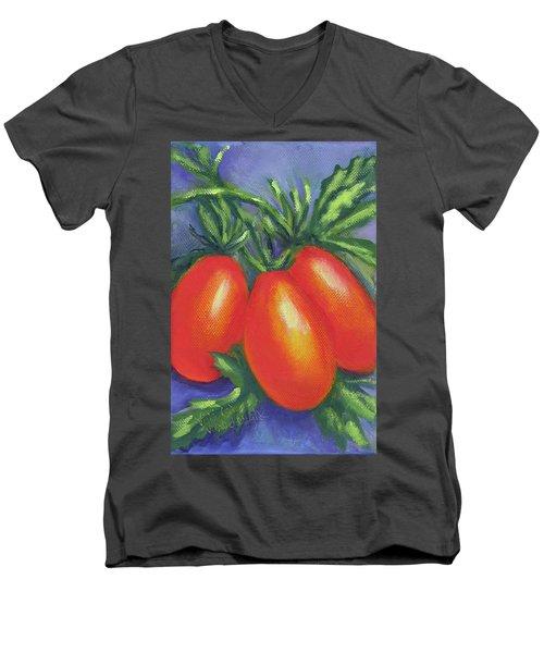 Tomato Seed Packet Men's V-Neck T-Shirt