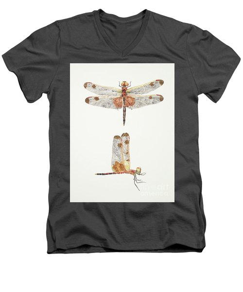 Top And Side Views Of A Male Calico Pennant Dragonfly Men's V-Neck T-Shirt