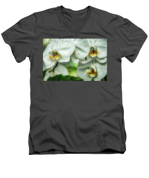 Toronto Orchids Men's V-Neck T-Shirt